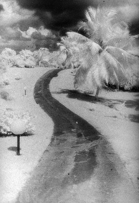 Neige sous les tropiques