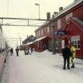 Train Oslo-Bergen en gare de Finse