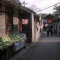 Hutongs et chou chinois