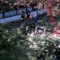 Dans les jardins de Suzhou