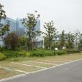Pas de problèmes de stationnement (lac Tai)